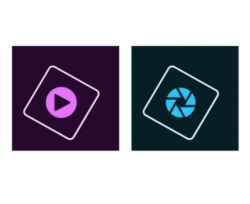ADOBE - Photoshop Elements 2018 & Premiere Elements 2018 - Licença - 1 utilizador - ESD - Mac - Inglês