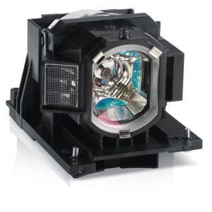 INFOCUS - Lâmpada do projector