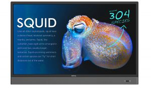 BENQ - RP553K - 55P Backlight LED, Resolution: 3840x2160, Brightness: 350 nits, Contrast: 1200:1, Response time: 6ms, Viewing angle: 178/178, Touch: IR 10points, Protection glass (4mm), D-sub, HDMI, USB, speaker: 20W x 2, RS232 input, RJ45, Remote control