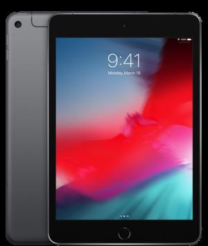 APPLE - iPad mini 5 Wi-Fi + Cellular 256GB - Space Grey