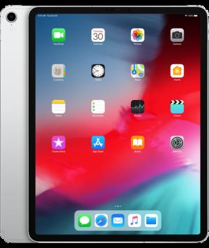 APPLE - 12.9-inch iPad Pro Wi-Fi 256GB - Silver